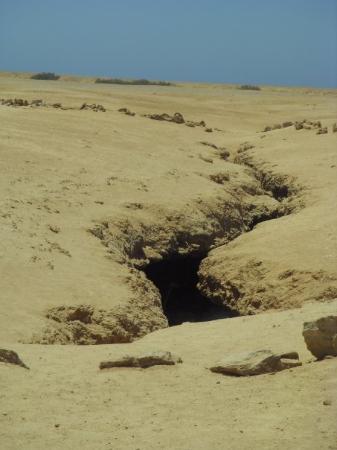 Ras Mohommed National Park Foto