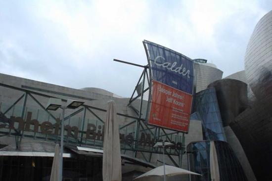 Bilbao Fine Arts Museum: Guggenheim, Bilbao