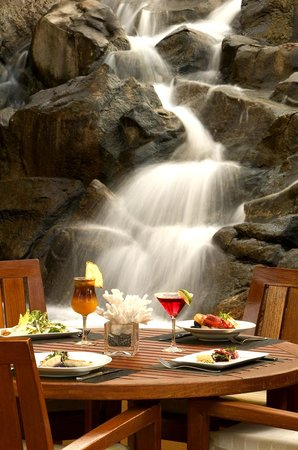 Tropica Restaurant & Bar: Enjoy Maui's finest amidst lush waterfall settings with Hawaiian styling music.