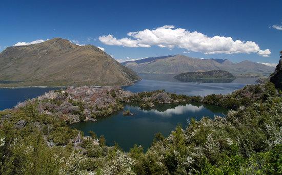 Eco Wanaka Adventures : The Lake on top of an Island...