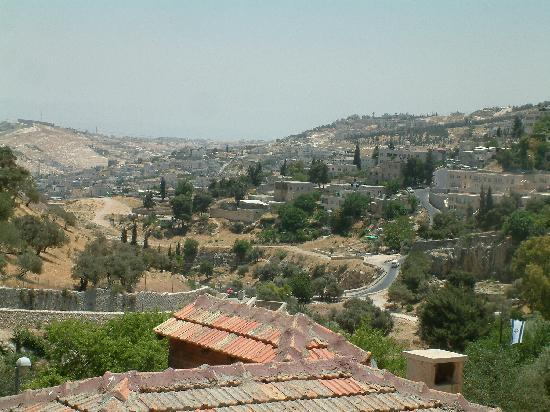 Avissar House: view