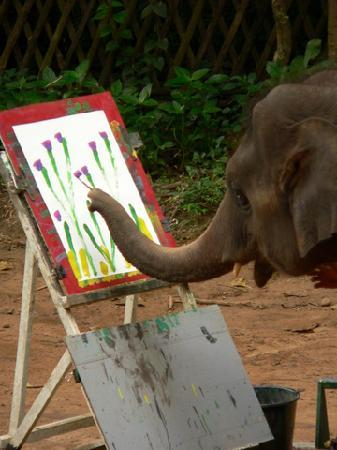 Suda S Self Portrait Tourists Recorded This Elephant Painting A Self Portrait In Thailand