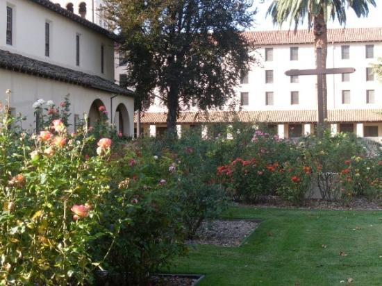 Mission Santa Clara de Asis : Roses in November