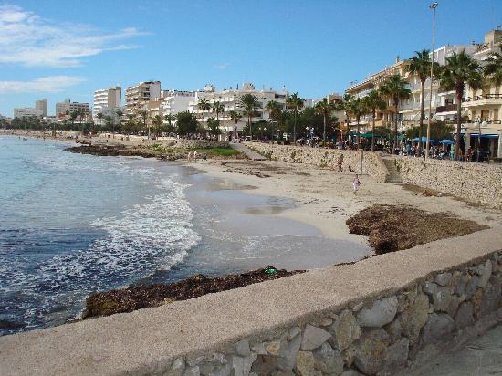 cala bona beach Picture of Hipotels Said Cala Millor TripAdvisor