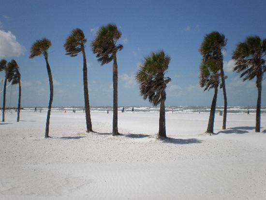 ساندز بوينت موتل: Awindy day on the beach