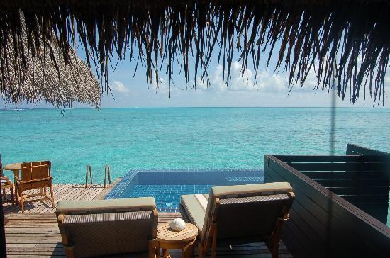 Taj Exotica Resort & Spa: Deck and private plunge pool at deluxe villa