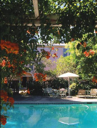 Camellia Inn: In the warmer months, we serve wine and cheese every evening by the pool. In the cooler months,