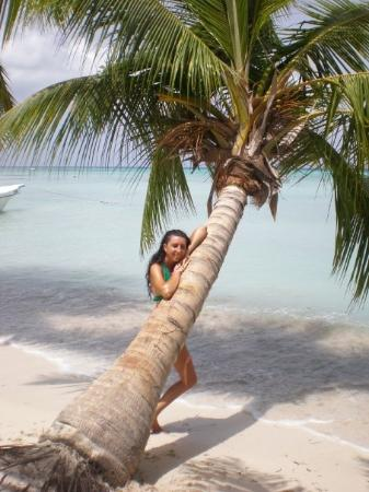Punta Cana-bild