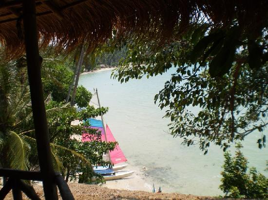 Treehouse : Beach, Sailbot, kayaks are for rent (cheap)