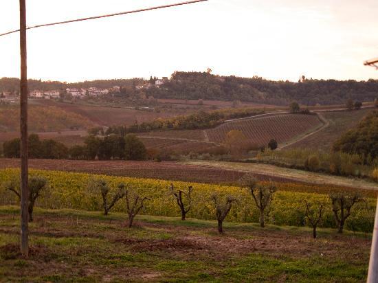 Agriturismo Poggio ai Cieli: sunrise/view from the front yard