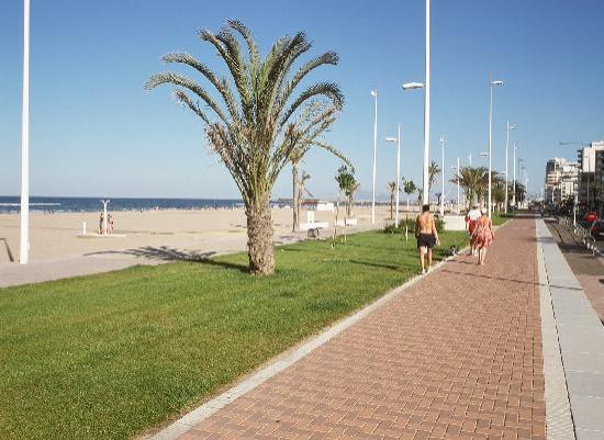 Hotel Albatros: playa