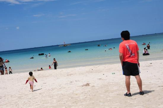 Trikora beach at noon! - ビン...