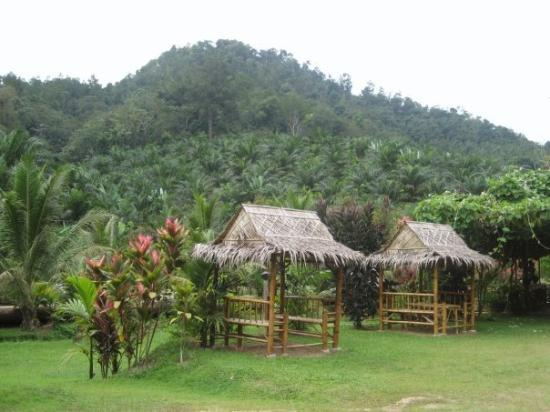 Gopeng Malaysia  city photo : gopeng scenery Picture of Ipoh, Kinta District TripAdvisor