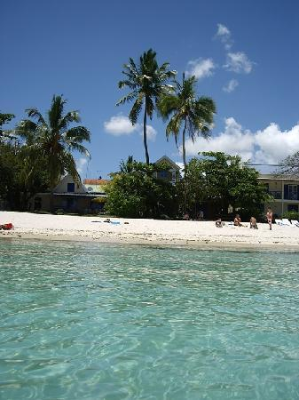 La Colombe: beach
