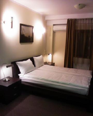SS Residence Timisoara Pensiunea Tania: My room