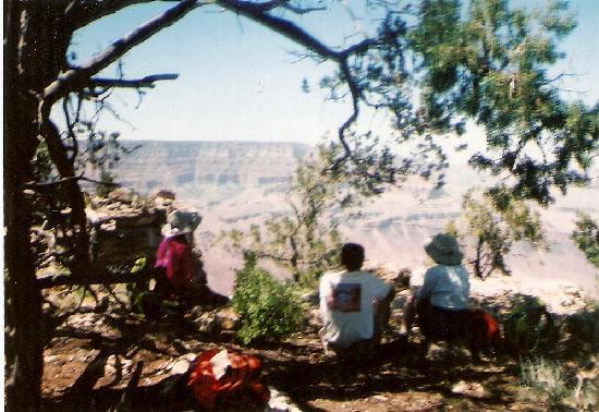 Desert View Campground: At the rim