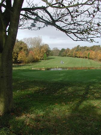 Scarcroft Golf Club: Pond by 14th green