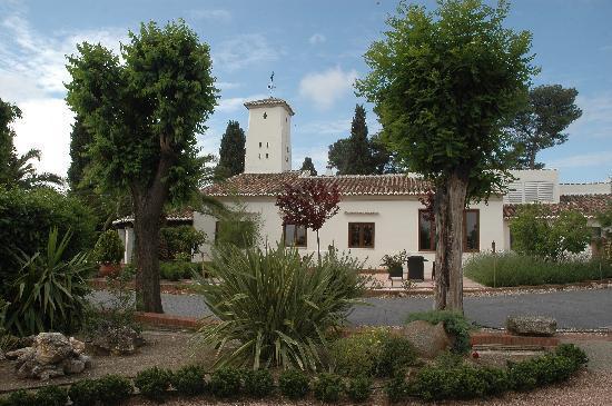 Hotel & Spa La Salve: Jardín