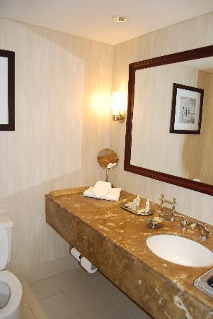 Renaissance Baltimore Harborplace Hotel: Bathroom in 7030