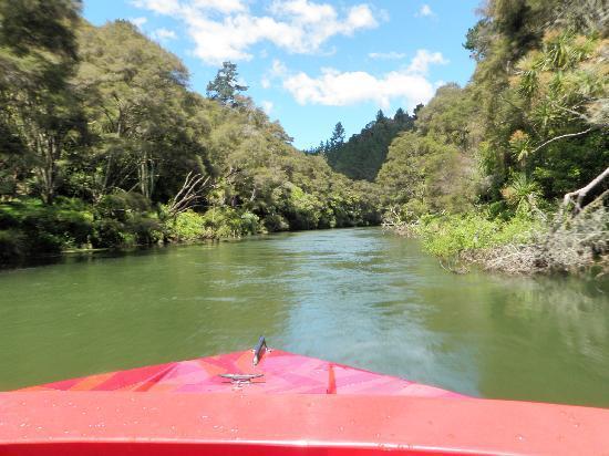 Spring Loaded Adventures: Jet Boat