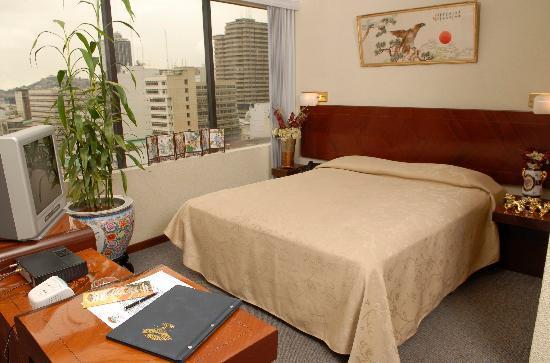 Hotel Sol De Oriente Internacional: Habitacion Sencilla