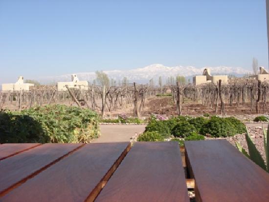 Cavas Wine Lodge: Breakfast view