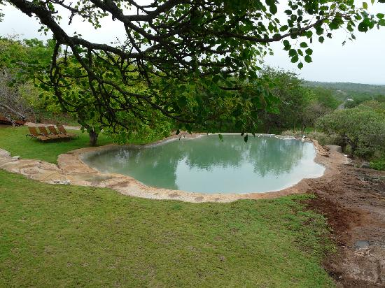 Esikhotheni Lodge: Pool