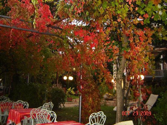 Hotel Catullo : Lakeside restaurant autumn seating