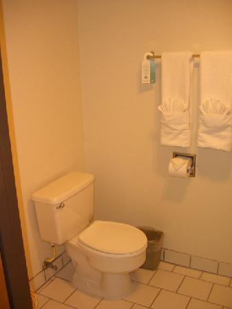 Best Western Plus Monterey Inn : toilet in 2 Queen room