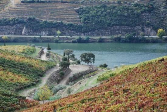 Pinhao, Portugal: Rio Douro - Após as Vindimas