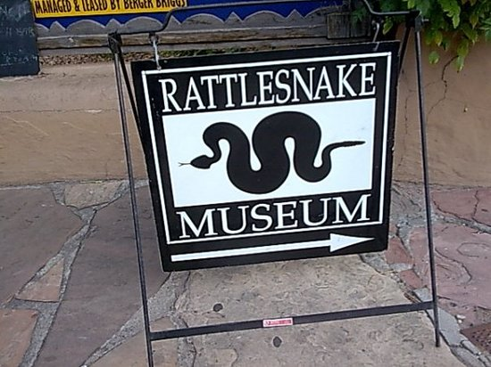 ‪American International Rattlesnake Museum‬