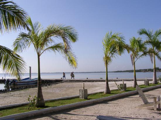 Tony's Inn & Beach Resort: the grounds
