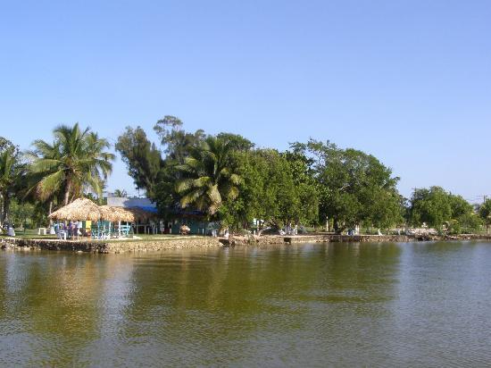 Tony's Inn & Beach Resort: view from the hotel