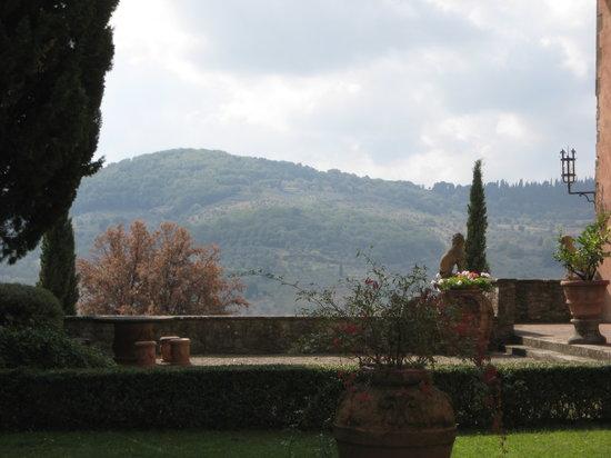 Vignamaggio: more of the gardens