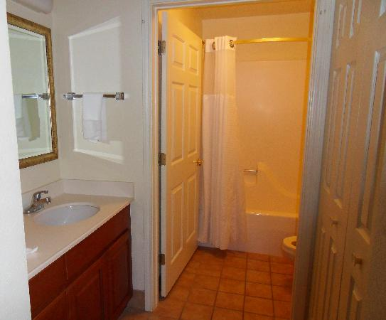 Sonesta ES Suites Columbia: Shower and big Counter area in Bath