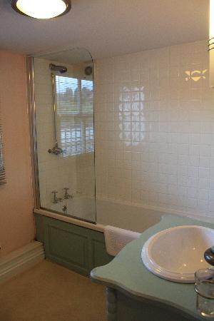 Dartmoor Inn: Our bathroom - Toile
