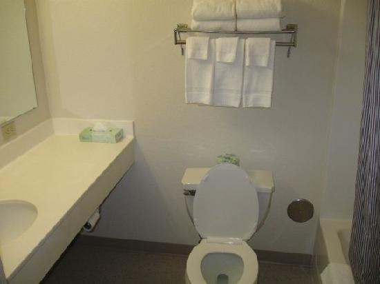 Extended Stay America - Rochester - North: Bathroom