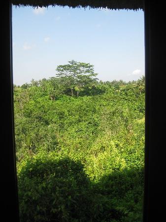 Amori Villas: room view