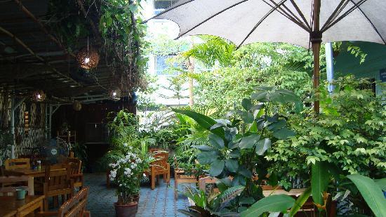 Viraporn's place : garden