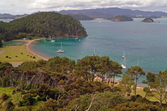 Carino Sailing & Dolphins: Moored for lunch at the Island