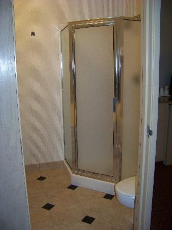 Best Western Plus Carlton Suites: Shower Stall