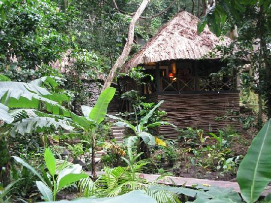 Qamea Resort And Spa Fiji: Jungle Spa