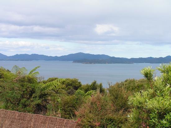 Pukematu Lodge: View from Pukematu