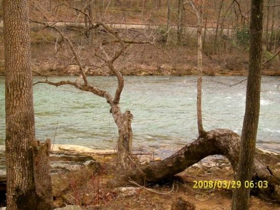 Volga, WV: River across the road, down the road, what have you. 