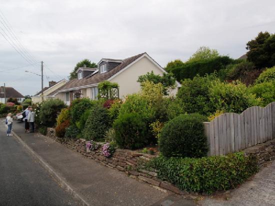 Harmony Homestay: Nice garden