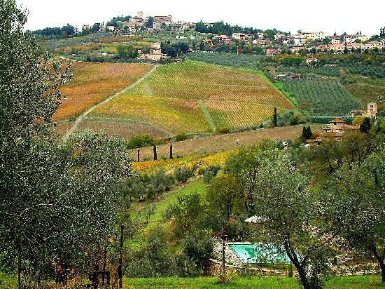 Tuscan Sunshine Tours: Toscano Chianti Classica region - great!