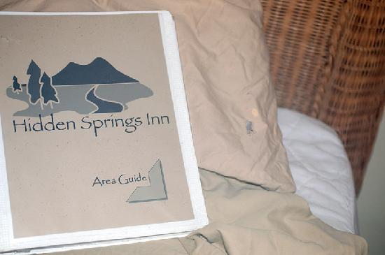 Hidden Springs Inn: The Hole and Stain in the Pillow Case