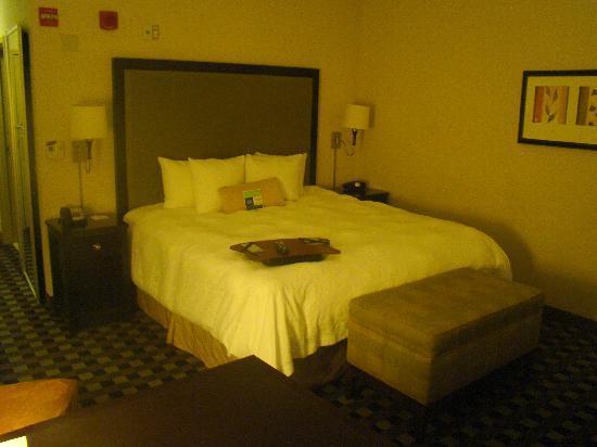 Hampton Inn & Suites Houston-Bush Intercontinental Airport : King room