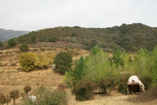 Foto de Riley's Farm
