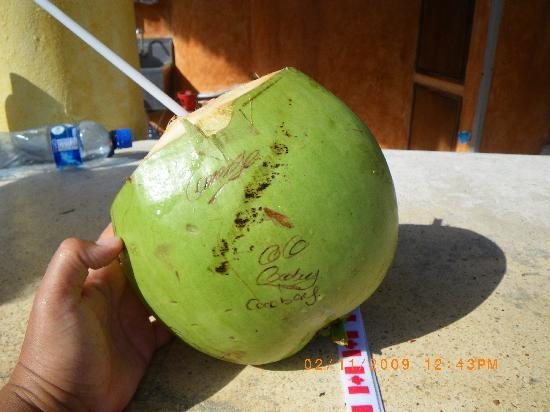 The Reef Coco Beach Coconut Drinks